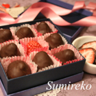 strawberry chocolate2.jpg
